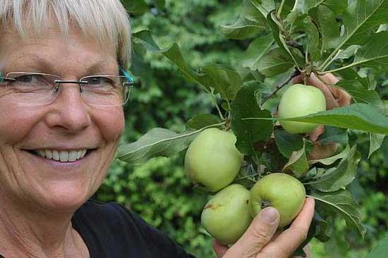 Wir haben viel Spaß bei der Apfelernte