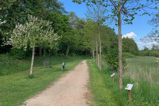 Der Meldorfer Naturlehrpfad am Kirchweg